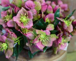 Искусственные цветы  оптом и в розницу