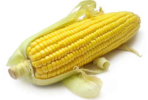 Семена кукурузы для вашего бизнеса