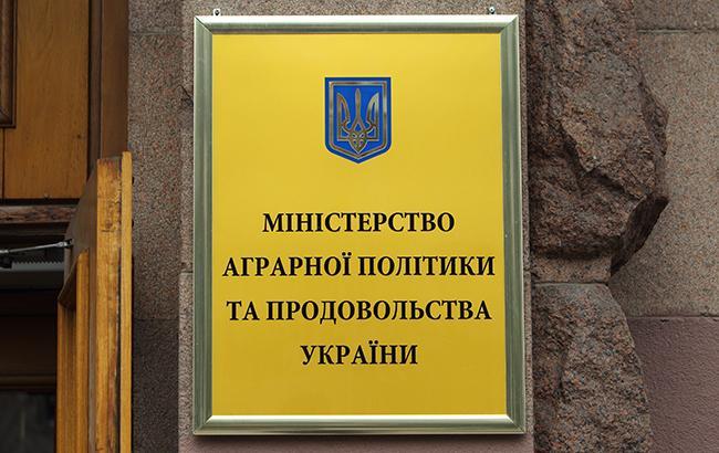 В прошлом году украинский аграрный экспорт в ЕС вырос более чем на 37%, - Минагрополитики