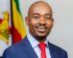В Зимбабве лидер оппозиции заявил о своей победе в президентских выборах