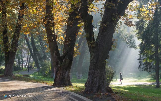 Погода на сегодня: в Украине без осадков, температура до +23