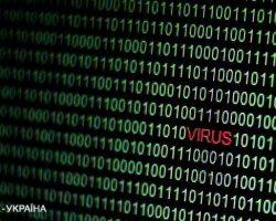 В Нидерландах заявили о кибервойне с РФ