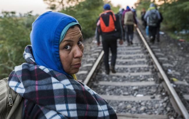 Около сотни мигрантов пытались прорваться через боснийско-хорватскую границу, есть пострадавшие