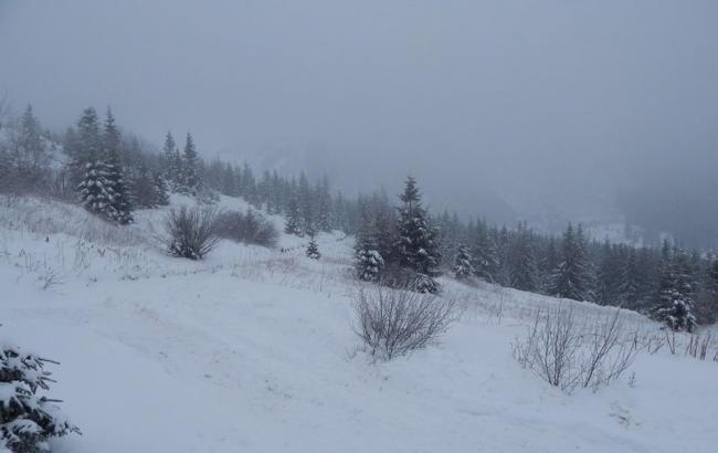 Высота снежного покрова в Карпатах местами достигает 29 см