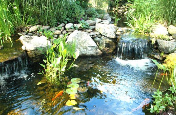 Качественные фильтры для прудов