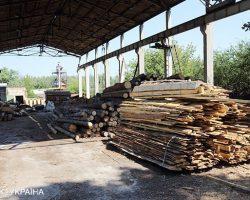 МЭРТ уполномочили на переговоры с ЕС по мораторию на экспорт леса