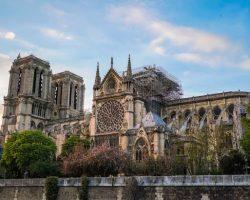 Во Франции полиция начала проверку Нотр-Дама после пожара