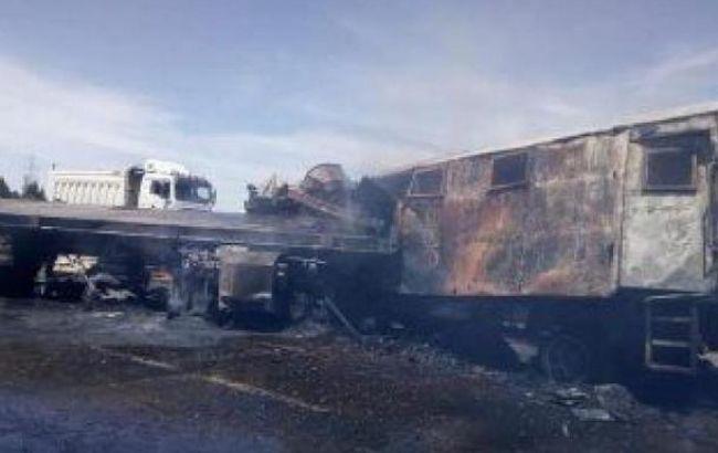 В Египте полицейский фургон столкнулся с грузовиком, 9 погибших