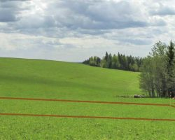 Вынос границ земельного участка в Харькове и по всей территории Украины