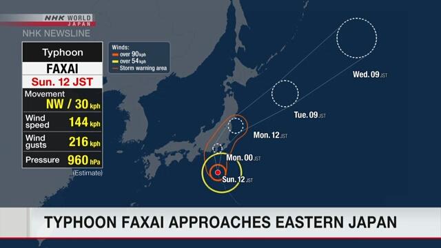 В Японии из-за тайфуна