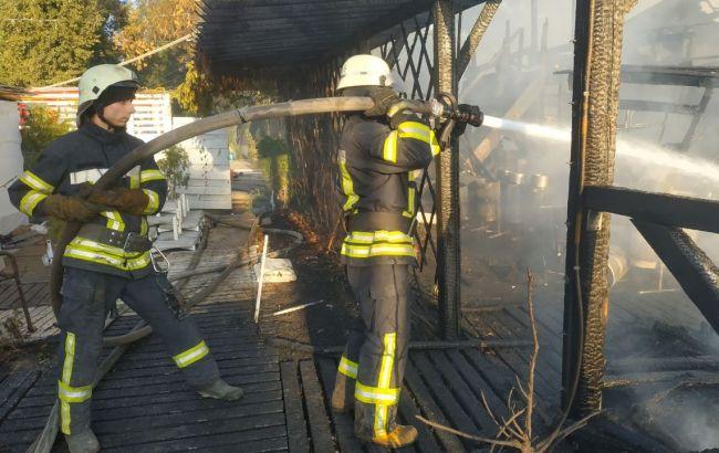 В Киеве ликвидировали пожар на Гидропарке