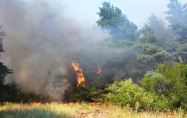 В Украине продолжает удерживаться пожарная опасность