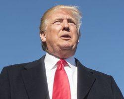 Трамп прокомментировал доклад демократов об импичменте