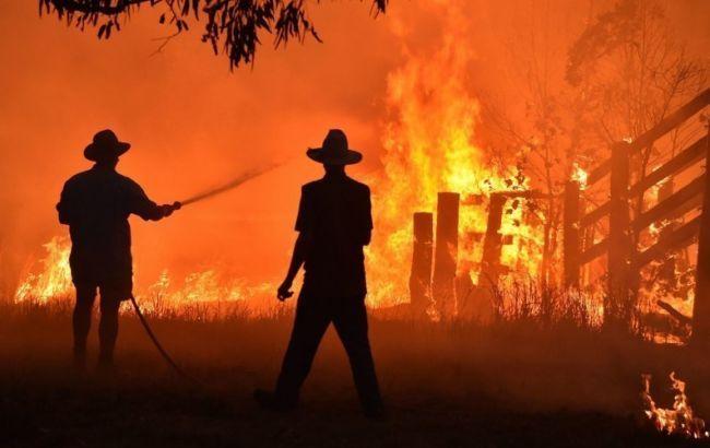 В Австралии расширяются лесные пожары