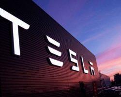 Суд в Германии постановил приостановить расчистку участка для Tesla