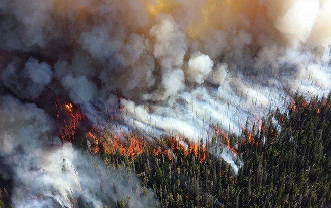 В Херсонской области за сутки произошло 4 пожара в экосистемах на площади 2 га