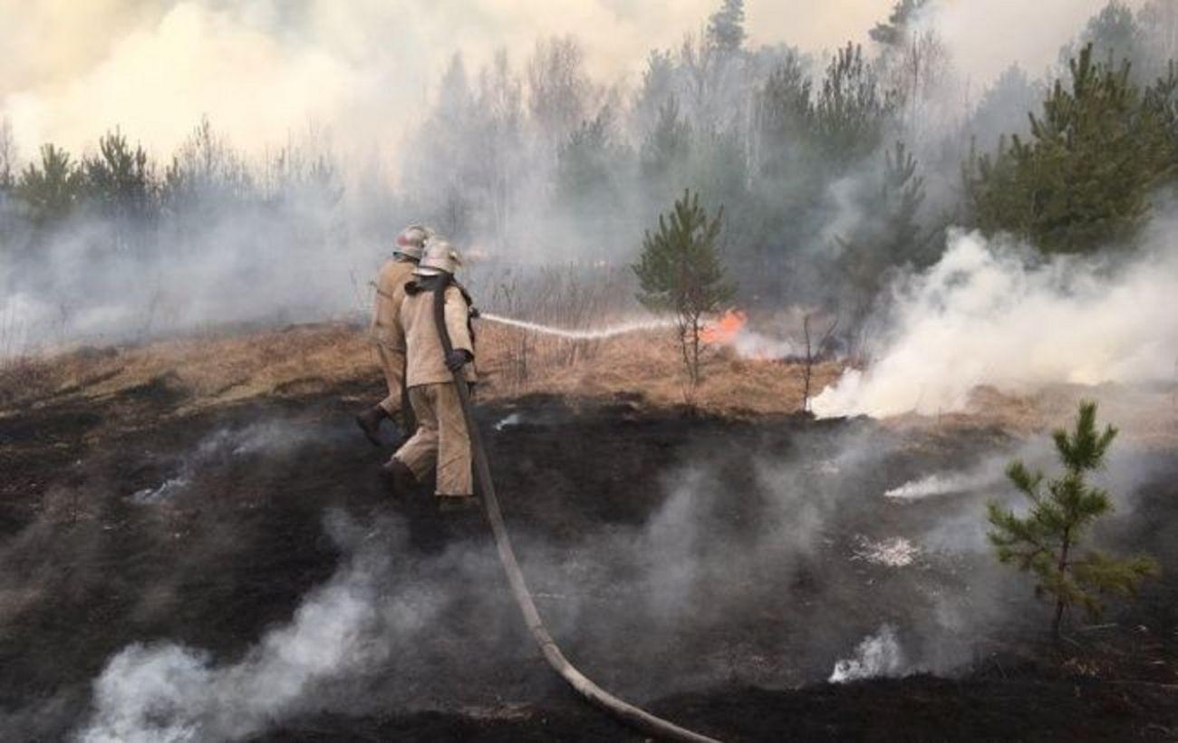 В Чернобыльской зоне третий день тушат лесной пожар