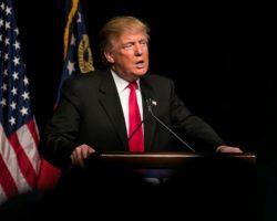 Трамп готов привлечь Вооруженные силы США для прекращения протестов