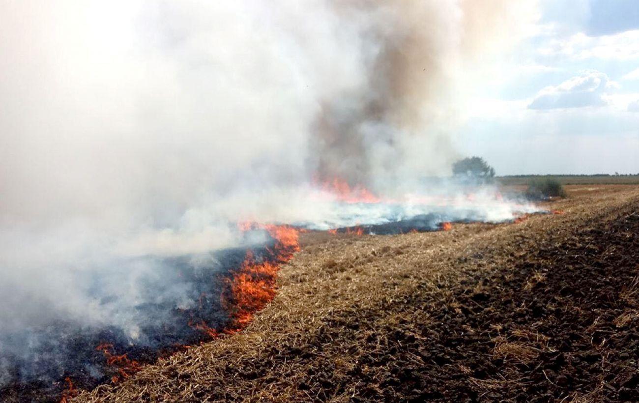 Почти в половине областей наблюдается чрезвычайный уровень пожарной опасности