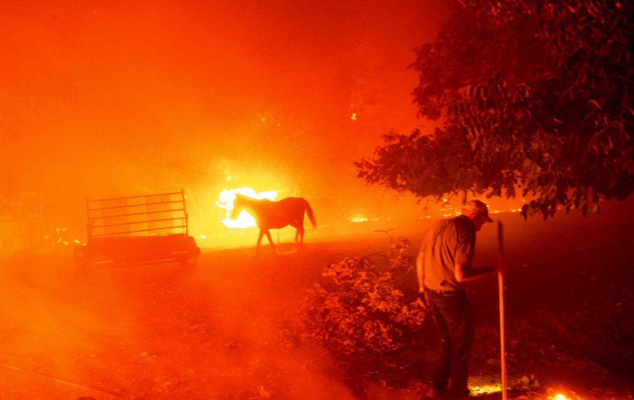 Трамп приказал оказать федеральную помощь Калифорнии из-за масштабных пожаров
