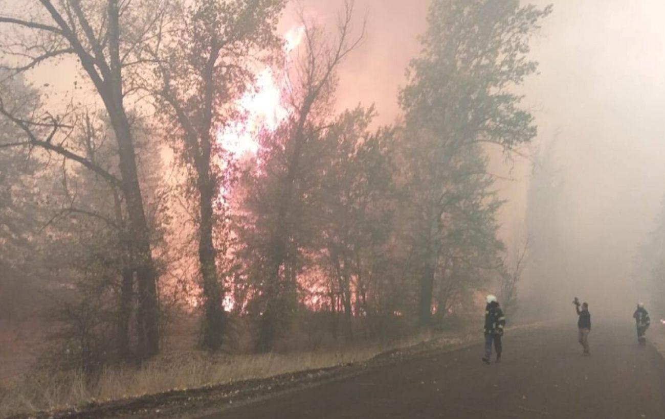 В Северодонецке отменили занятия в школах из-за эвакуации пострадавших от пожаров