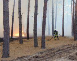 Российские наемники спровоцировали в Луганской области пожары, - РГА
