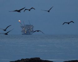 Страны ОПЕК+ решили не наращивать нефтедобычу в апреле, но не все