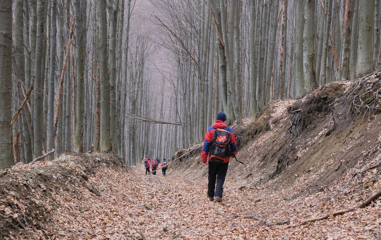 Исчез более трех месяцев назад: в Карпатах возобновили поиски туриста из Киева