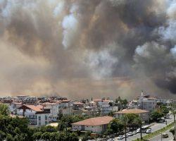 Туристов эвакуировали из трех отелей Бодрума из-за лесных пожаров