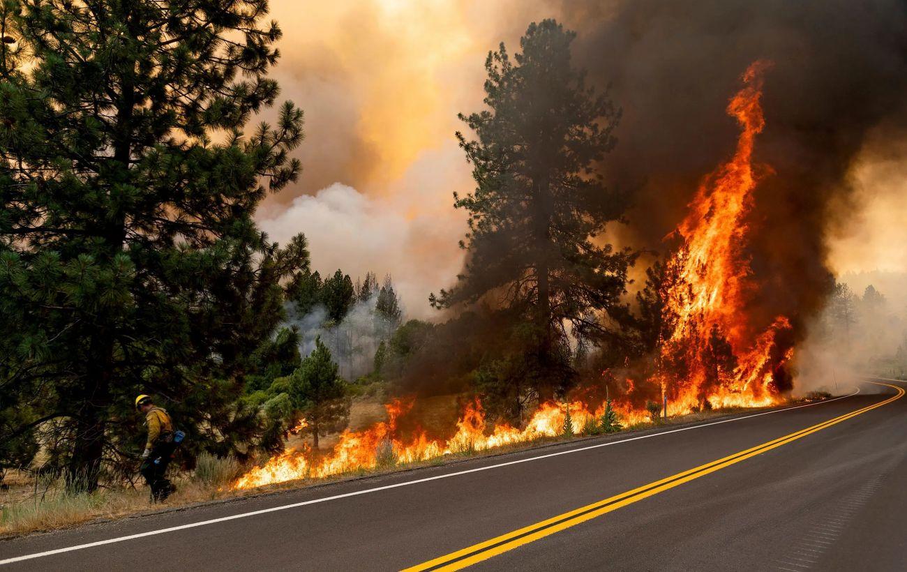 В Калифорнии вспыхнули пожары из-за жары: горят леса и дома, людей эвакуировали