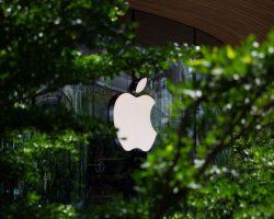 В cети появились фото возможного iPhone 13: у него нет разъема для подзарядки