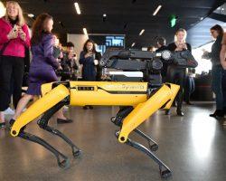 Уменьшит зависимость от человека: Boston Dynamics выпустила обновление для робопса